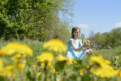 Girl with dandelions Royalty Free Stock Image