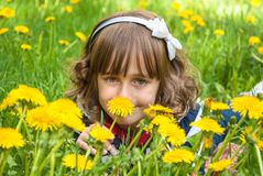 Girl among dandelions Stock Image