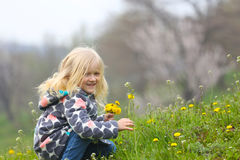 Girl with dandelions Royalty Free Stock Photo