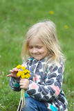Girl with dandelions Stock Image