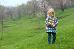 Girl with dandelions Stock Photography