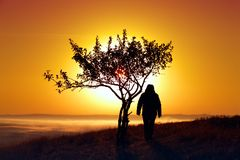 A girl at dawn in the mountains near a tree. Against the backdrop of the rising sun Royalty Free Stock Photos