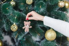 Girl decorate the Christmas tree in a house interior Royalty Free Stock Photo