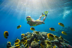 Girl dives in a tropical sea Stock Images