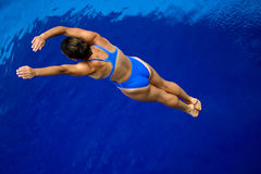 Girl diving in pool -3 Stock Image