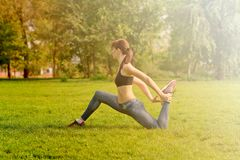 The girl does a warm-up on the sunlight, green lawn. In a pleasa Stock Photo