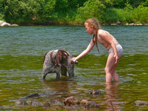Girl and Dog 11. A small girl plays with dog in water. Summer, sunny day Royalty Free Stock Photos