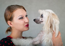 Girl and dog. The beautiful girl and chinese crested dog on grey background. Shallow DOF, focus on dog Stock Photos