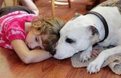 Girl and Dog. A little girl relaxes on the floor with her pet dog Stock Image