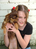 Girl and dog. Pretty girl with pet dog stock photography