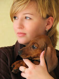 Girl with a dog. Young beautiful girl holding small dachshund poppy on her hand Royalty Free Stock Photography