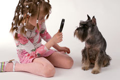 The girl and dog Royalty Free Stock Image