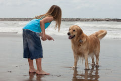 Girl with dog. Little girl playing with her dog by the ocean Royalty Free Stock Image