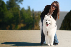 Girl with dog. A beautiful Asia girl with samoyed Stock Images