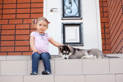 Girl with dog Stock Images