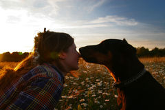 Girl with dog. Portrait of the girl with her dog on the sundown stock image
