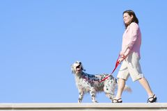 Girl with the dog Stock Images