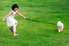 Girl and dog. Playing on the lawn Stock Photo