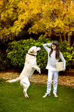 Girl with a dog in the autumn. Garden Royalty Free Stock Image