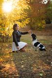 Girl and dog in autumn park stock images