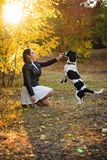 Girl and dog in autumn park stock image