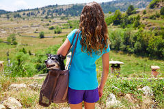Girl with dog in a bag rear view looking mountains Stock Image