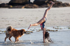 Girl and dog at the beach Royalty Free Stock Images