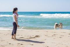 Girl dog beach Stock Photography