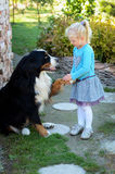 Girl and a dog Royalty Free Stock Image