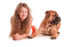 Girl and dog bullmastiff Stock Photos