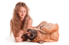Girl and dog bullmastiff Stock Photography