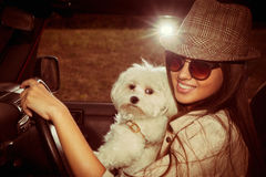 Girl and dog in car Stock Photos