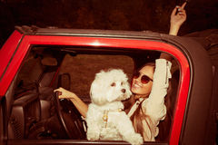 Girl and dog in car Royalty Free Stock Photos