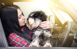Girl with dog in the car Stock Images