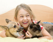 Girl with a dog and a cat. Little girl with a dog and a cat on a bed of yellow color Stock Photo