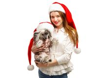 A girl and a dog are dressed in a Santa`s red Santa hat. A girl is holding a dog. Isolated on white background. Indoors. stock image