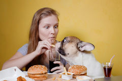 Girl and dog eating fast food Royalty Free Stock Image