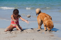 Girl and dog have fun at the beach Royalty Free Stock Image