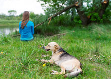The girl and dog have rest in grass at river. Royalty Free Stock Photos