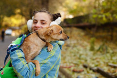Girl and dog. The girl is holding a small dog in her arms. Mistress and home pet for a walk in the autumn park Stock Images