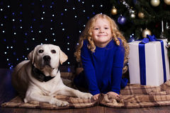 Girl and dog at home are resting near christmas Royalty Free Stock Photos