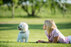 Girl and dog. Lying on the grass Stock Photo