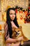 Girl and dog in the new year stock photos