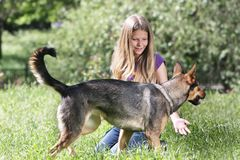 Girl with dog outdoors. Young girl with dog outdoors Royalty Free Stock Image