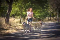 Girl with dog. In park Stock Photos