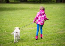 Girl with dog in park Royalty Free Stock Photos