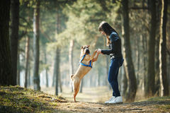 Girl with dog in the park Royalty Free Stock Photos