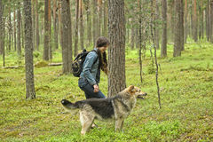 Girl with  dog in a pine forest Royalty Free Stock Photo