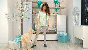 Girl with a dog is playing with a hoop in room with Christmas decorations. Girl and dog in the room with Christmas decorations. The girl gives the dogs to the stock video footage