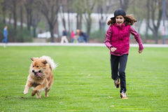 Girl and dog running on the lawn. Cute girl and her cute Elo (German dog breed) dog running on the green lawn Royalty Free Stock Photography